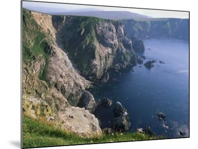 Cliffs of Hermaness National Nature Reserve, Unst, Shetland Islands, Scotland, UK-Patrick Dieudonne-Mounted Photographic Print