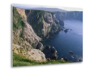 Cliffs of Hermaness National Nature Reserve, Unst, Shetland Islands, Scotland, UK-Patrick Dieudonne-Metal Print