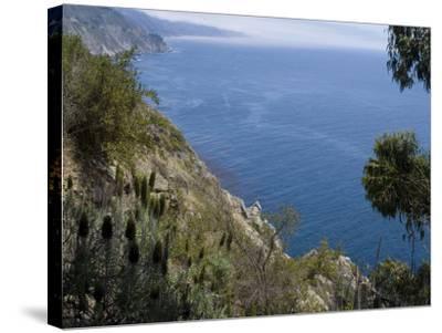 Coastline View, Big Sur, California, United States of America, North America-Ethel Davies-Stretched Canvas Print