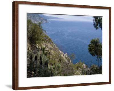 Coastline View, Big Sur, California, United States of America, North America-Ethel Davies-Framed Photographic Print
