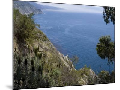 Coastline View, Big Sur, California, United States of America, North America-Ethel Davies-Mounted Photographic Print