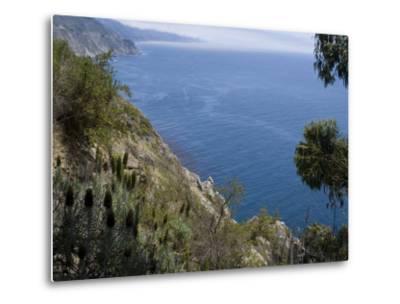 Coastline View, Big Sur, California, United States of America, North America-Ethel Davies-Metal Print