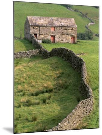 Traditional Barn in Upper Swaledale, Yorkshire Dales National Park, Yorkshire, England, UK-Patrick Dieudonne-Mounted Photographic Print