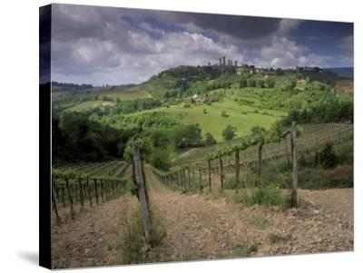 Vineyards and the Medivel Town of San Gimignano Delle Belle Torri, Tuscany, Italy-Patrick Dieudonne-Stretched Canvas Print