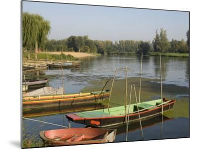 Punts in the Loire Valley, France, Europe-James Emmerson-Mounted Photographic Print