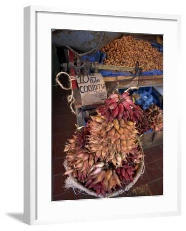 Tequila Fruit for Sale on a Stall in Mexico, North America-Michelle Garrett-Framed Photographic Print