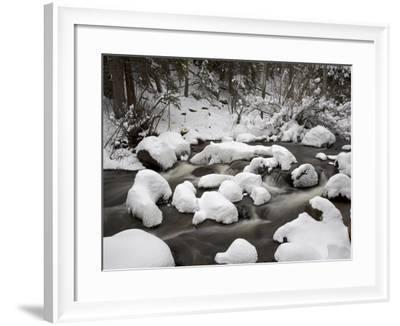 Snow-Covered Boulders and Flowing Creek, Glacier Creek, Rocky Mountain National Park, Colorado, USA-James Hager-Framed Photographic Print