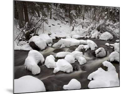 Snow-Covered Boulders and Flowing Creek, Glacier Creek, Rocky Mountain National Park, Colorado, USA-James Hager-Mounted Photographic Print