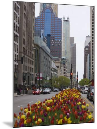Spring Tulips on North Michigan Avenue, Chicago, Illinois, United States of America, North America-Amanda Hall-Mounted Photographic Print