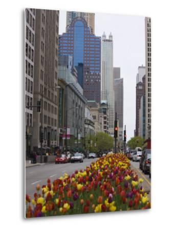 Spring Tulips on North Michigan Avenue, Chicago, Illinois, United States of America, North America-Amanda Hall-Metal Print