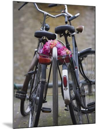Two Bicycles with a Flower Chain, Amsterdam, Netherlands, Europe-Amanda Hall-Mounted Photographic Print
