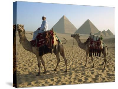 Camels and Rider at the Giza Pyramids, UNESCO World Heritage Site, Giza, Cairo, Egypt-Dominic Harcourt-webster-Stretched Canvas Print
