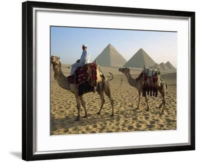 Camels and Rider at the Giza Pyramids, UNESCO World Heritage Site, Giza, Cairo, Egypt-Dominic Harcourt-webster-Framed Photographic Print