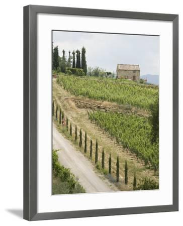 Typical View of the Tuscan Landscape, Le Crete, Tuscany, Italy, Europe-Robert Harding-Framed Photographic Print