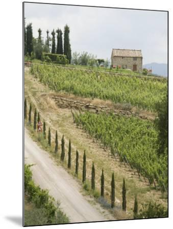 Typical View of the Tuscan Landscape, Le Crete, Tuscany, Italy, Europe-Robert Harding-Mounted Photographic Print