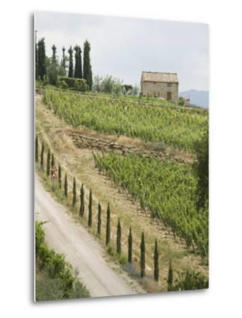 Typical View of the Tuscan Landscape, Le Crete, Tuscany, Italy, Europe-Robert Harding-Metal Print