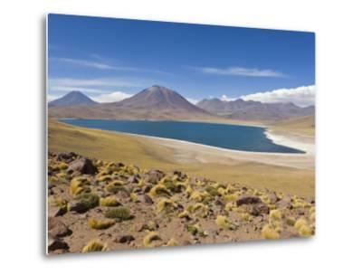 Los Flamencos National Reserve, Atacama Desert, Antofagasta Region, Norte Grande, Chile-Gavin Hellier-Metal Print