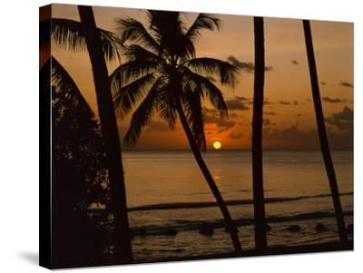 Beach at Sunset, Barbados, West Indies, Caribbean, Central America-Harding Robert-Stretched Canvas Print