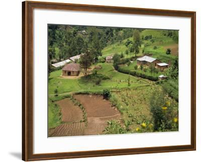 Aerial View of Children Leaving School and Terraced Fields, Kabale, Uganda, Africa-Poole David-Framed Photographic Print