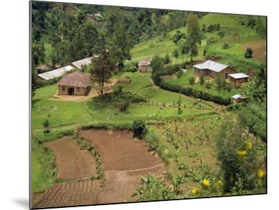 Aerial View of Children Leaving School and Terraced Fields, Kabale, Uganda, Africa-Poole David-Mounted Photographic Print