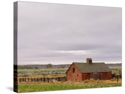Emblem, Wyoming, United States of America, North America-Pitamitz Sergio-Stretched Canvas Print