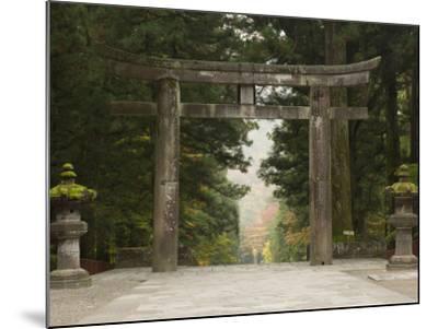 Stone Torii, Tosho-Gu Shrine, Nikko, Central Honshu, Japan-Schlenker Jochen-Mounted Photographic Print