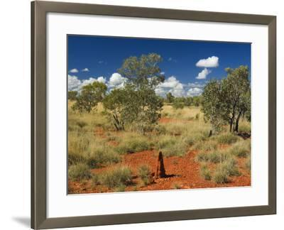 Termite Mounds in the Outback, Queensland, Australia, Pacific-Schlenker Jochen-Framed Photographic Print