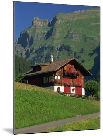 Typical Wooden Chalet with Colourful Shutters, Grindelwald, Bern, Switzerland, Europe-Tomlinson Ruth-Mounted Photographic Print