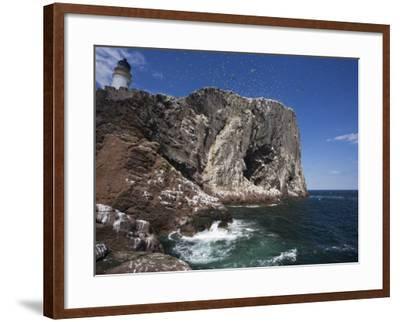 Bass Rock, Firth of Forth, Scotland, United Kingdom, Europe-Toon Ann & Steve-Framed Photographic Print