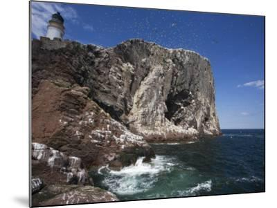 Bass Rock, Firth of Forth, Scotland, United Kingdom, Europe-Toon Ann & Steve-Mounted Photographic Print