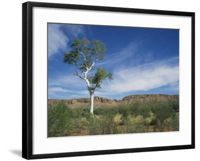 Landscape in the West Macdonnell Ranges Near Alice Springs in the Northern Territory, Australia-Wilson Ken-Framed Photographic Print
