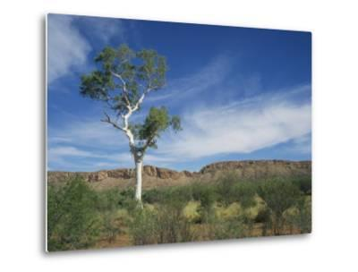 Landscape in the West Macdonnell Ranges Near Alice Springs in the Northern Territory, Australia-Wilson Ken-Metal Print
