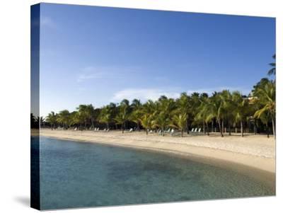 Beach at Harbour Village Resort, Bonaire, Netherlands Antilles, Caribbean, Central America-DeFreitas Michael-Stretched Canvas Print
