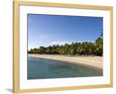 Beach at Harbour Village Resort, Bonaire, Netherlands Antilles, Caribbean, Central America-DeFreitas Michael-Framed Photographic Print
