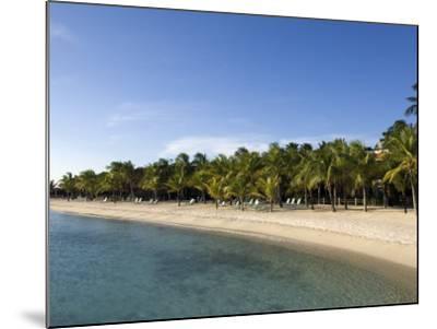 Beach at Harbour Village Resort, Bonaire, Netherlands Antilles, Caribbean, Central America-DeFreitas Michael-Mounted Photographic Print