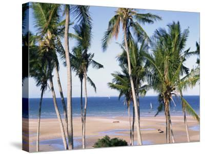 Palm Tree and Tropical Beach on the Coast of Mozambique, Africa-Groenendijk Peter-Stretched Canvas Print