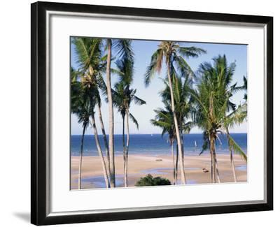 Palm Tree and Tropical Beach on the Coast of Mozambique, Africa-Groenendijk Peter-Framed Photographic Print