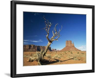 Desert Landscape with Rock Formations and Cliffs in the Background, Monument Valley, Arizona, USA--Framed Photographic Print