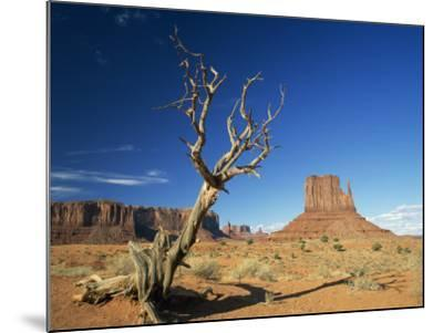 Desert Landscape with Rock Formations and Cliffs in the Background, Monument Valley, Arizona, USA--Mounted Photographic Print