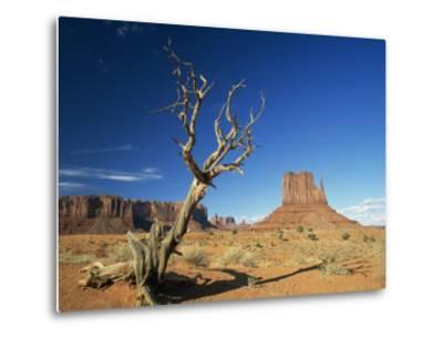Desert Landscape with Rock Formations and Cliffs in the Background, Monument Valley, Arizona, USA--Metal Print