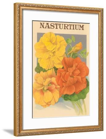 Nasturtium Seed Packet--Framed Art Print