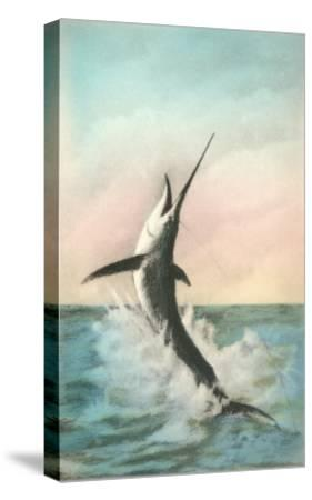 Swordfish on the Line--Stretched Canvas Print
