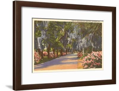 Bonaventure Cemetery, Savannah, Georgia--Framed Art Print