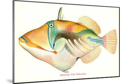 Hawaiian Fish, Nakunuku--Mounted Art Print