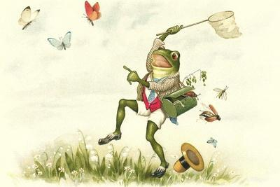 Frog Lepidopterist--Stretched Canvas Print