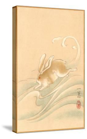 Rabbit Playing in Water--Stretched Canvas Print