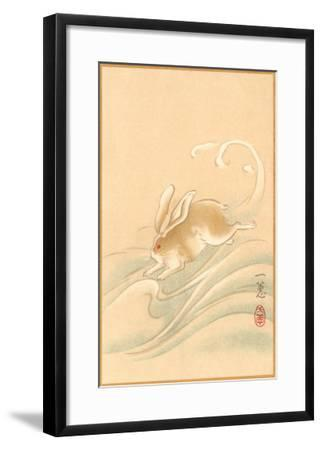 Rabbit Playing in Water--Framed Art Print