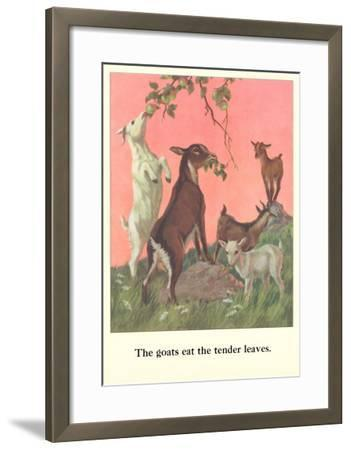 Goats Eat Tender Leaves--Framed Art Print
