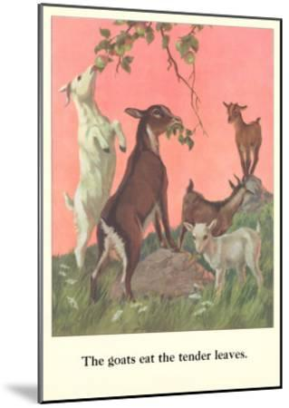 Goats Eat Tender Leaves--Mounted Art Print