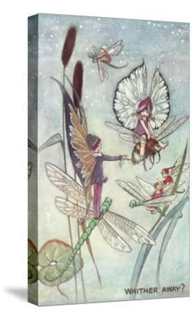 Fairies Riding Dragonflies and Bees--Stretched Canvas Print